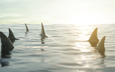 How to Pitch Your Product to the Sharks on Shark Tank
