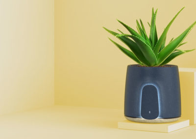 NATEDE, a smart natural air purifier